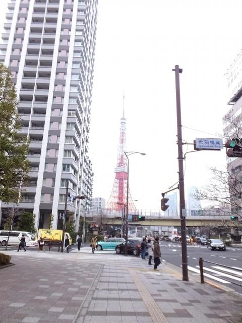 藤和シティスクエア三田ノースウィング 東京タワー