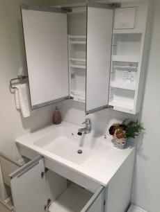 エザンス高井戸 洗面台