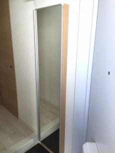 ライオンズマンション北新宿 シューズボックス