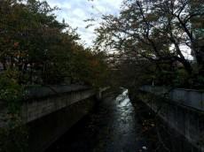 東中野コーポラス 周辺環境