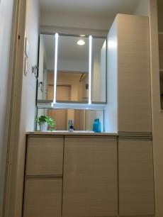 ライフルーデンス阿佐ケ谷 洗面室