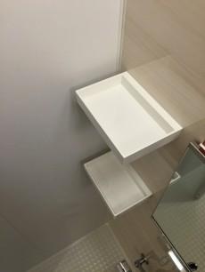 ライオンズマンション高円寺南 バスルーム