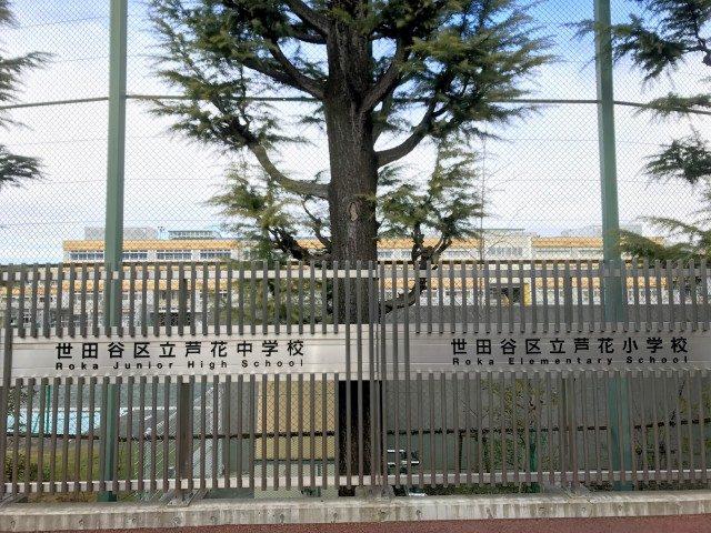 芦花駅周辺 (12)