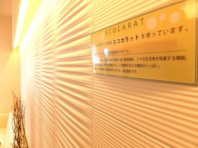 キャニオングランデ荻窪 リビング壁