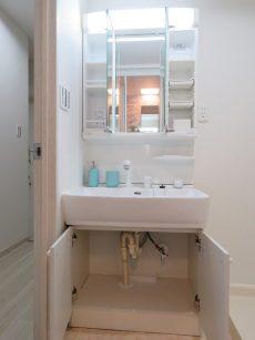 秀和南大井レジデンス 洗面化粧台