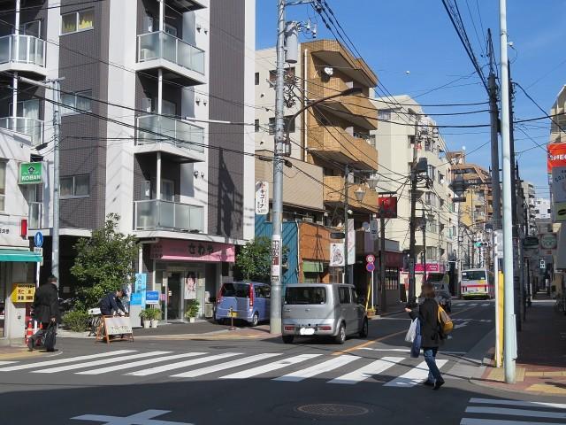 西蒲田ダイヤモンドマンション 周辺環境