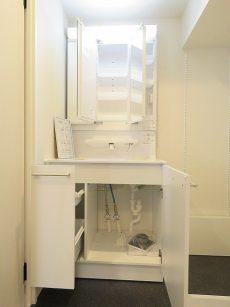 キャッスル世田谷 洗面化粧台