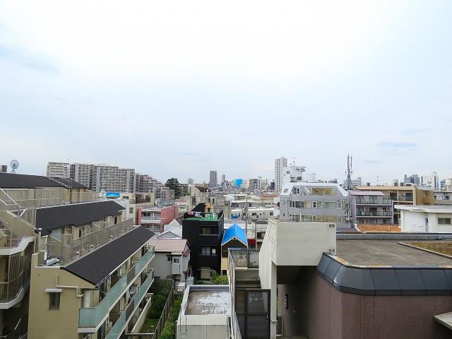 キャッスル世田谷 眺望
