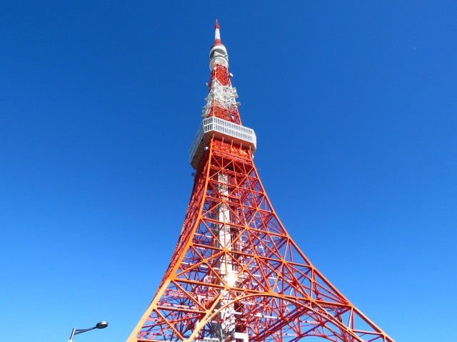 レック芝公園マンション 東京タワー