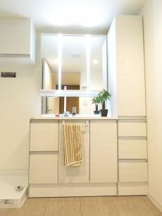 ファミールプランシェ経堂 洗面化粧台