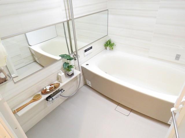 ファミールプランシェ経堂 バスルーム