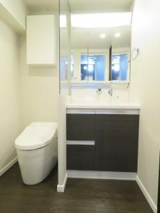 都立大グリーンパーク トイレと洗面化粧台
