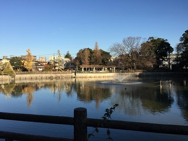 秀和清水池レジデンス 周辺環境