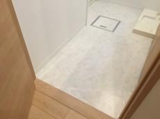 日興パレス文京 洗面室&バスルーム