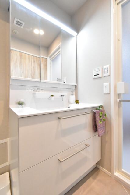 フォンテ青山 洗面室
