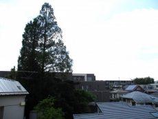 34代々木ハビテーション 眺望1