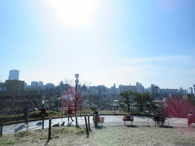 代官山コーポラス 西郷山公園