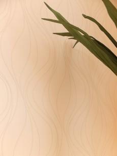センチュリー巣鴨 洋室 壁