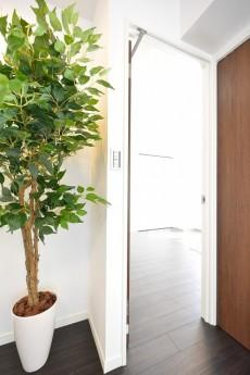 中銀南青山マンシオン 6.0帖洋室の入口