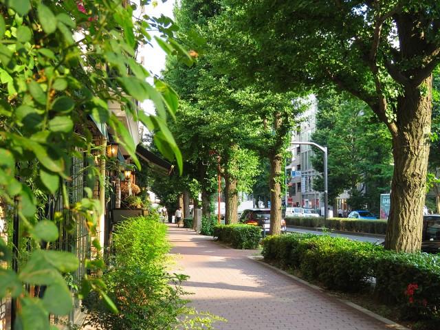 白金台桜苑マンション プラチナストリート
