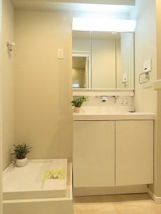 ライオンズマンション等々力 洗濯機置場と洗面化粧台