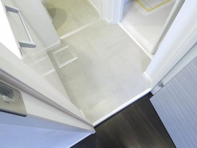 ビラ自由ヶ丘 洗面室