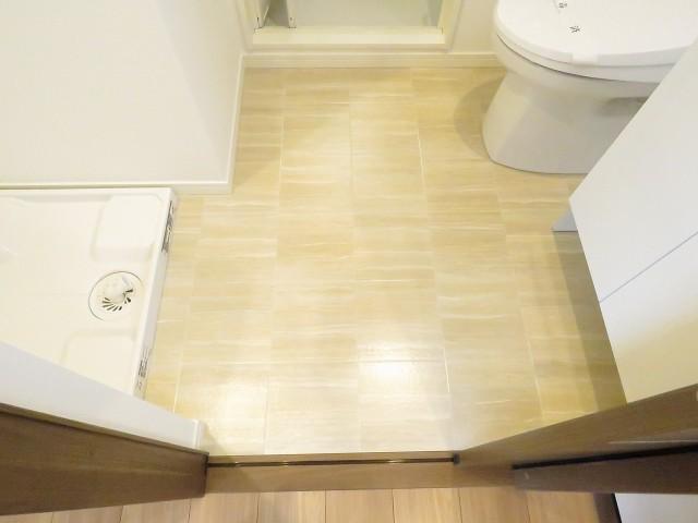 レヂオンス大山 洗面室