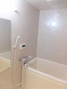 ニューハイツ大森 浴室