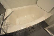 ルネ御苑プラザ313 浴槽