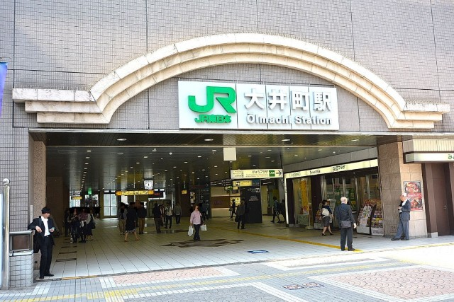 ワールドパレス大井仙台坂Ⅱ 大井町駅