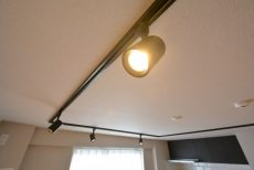 玉川コーポラス 207号室 ランプ