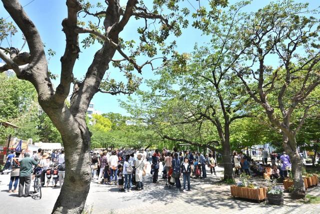 アスコットパーク東京八丁堀 公園