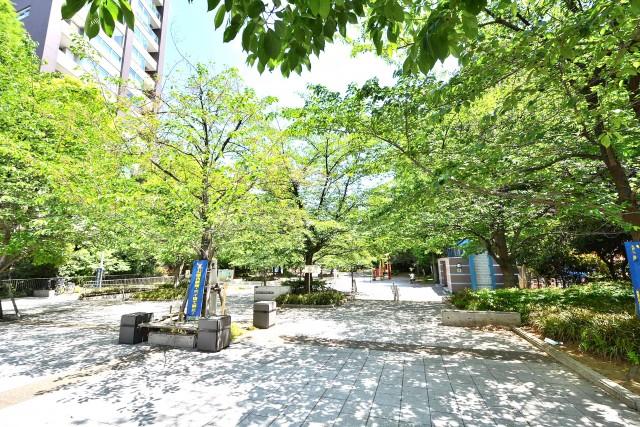 ライオンズマンション茅場町 桜川公園