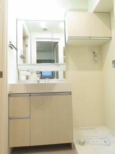 セブンスターマンション第3大森 洗面化粧台と洗濯機置場