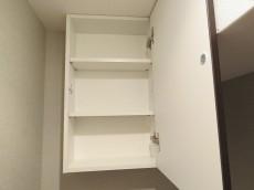 グリーンキャピタル第二笹塚 トイレ収納