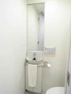 レジデンシャルスター三軒茶屋 トイレ内の手洗い場