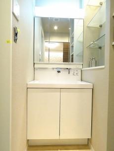 赤坂パレスマンション 洗面化粧台