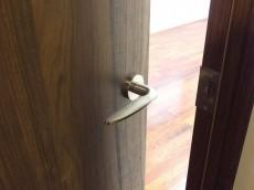ラポール駒込 6.0帖洋室ドア