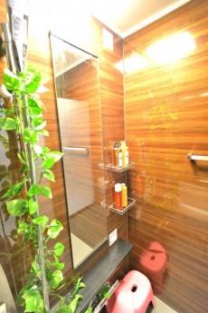 ライオンズマンション方南台 バスルーム