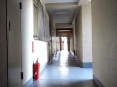 大森中央ハイム 共用廊下