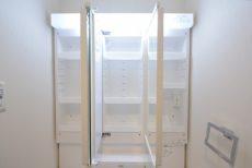 プレジール新宿大久保 洗面室