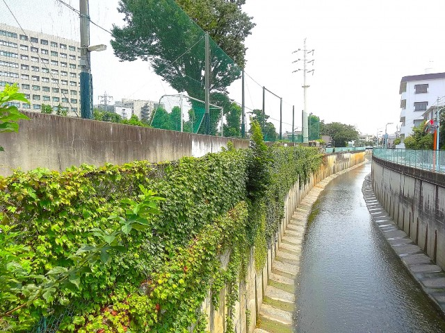 日商岩井大岡山第2マンション 周辺