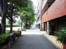 サンスタレ駒沢ファーストコート 前面道路