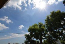 東急ドエルアルス上野毛206  太陽
