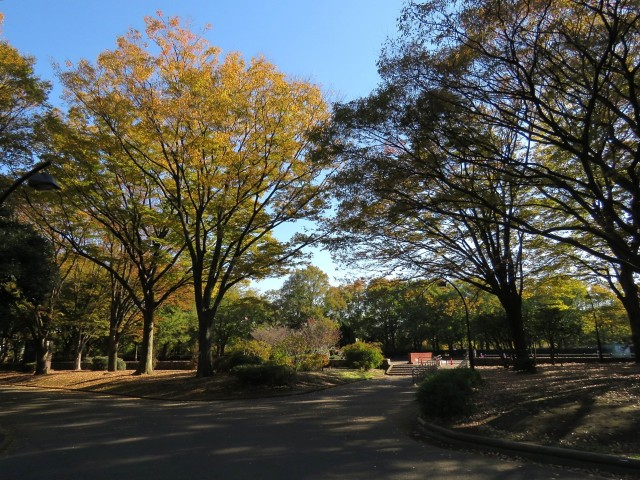 上馬マンション 駒沢公園