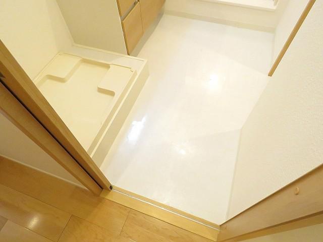 秀和大岡山レジデンス 洗面室