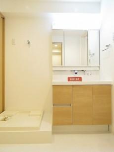 秀和大岡山レジデンス 洗濯機置場と洗面化粧台