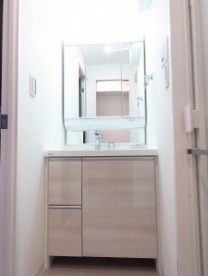 藤和ハイタウン上野 洗面化粧台