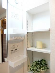 成城マンション 洗面収納