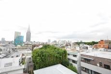 代々木コーポラス 5.5帖洋室眺望